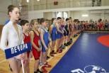 Борцы из разных городов России приняли участие в Международном турнире финно-угорских народов по греко-римской борьбе