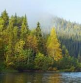 Карелия вошла в топ-10 регионов России по популярности экотуризма