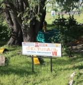VII Межрегиональный фестиваль мордовской национальной культуры «Эрзянь Лисьмапря»
