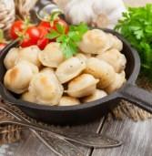 Пельмени на любой вкус и другие национальные блюда финно-угорских народов: что еще ждет гостей фестиваля «Мы ветви древа одного»