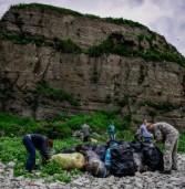 Год экологии положил начало «зеленым» переменам в России