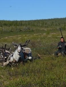 Молодежная этнографическая экспедиция «Зов тундры» пройдет по Ямалу