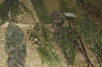 «Хрустальная бабушка»:  травница из Удмуртии